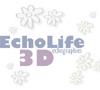 Echographie 3D