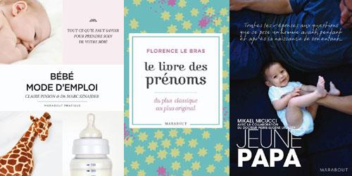 livres sur la grossesse et bébé